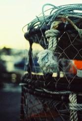 Crabbing detail