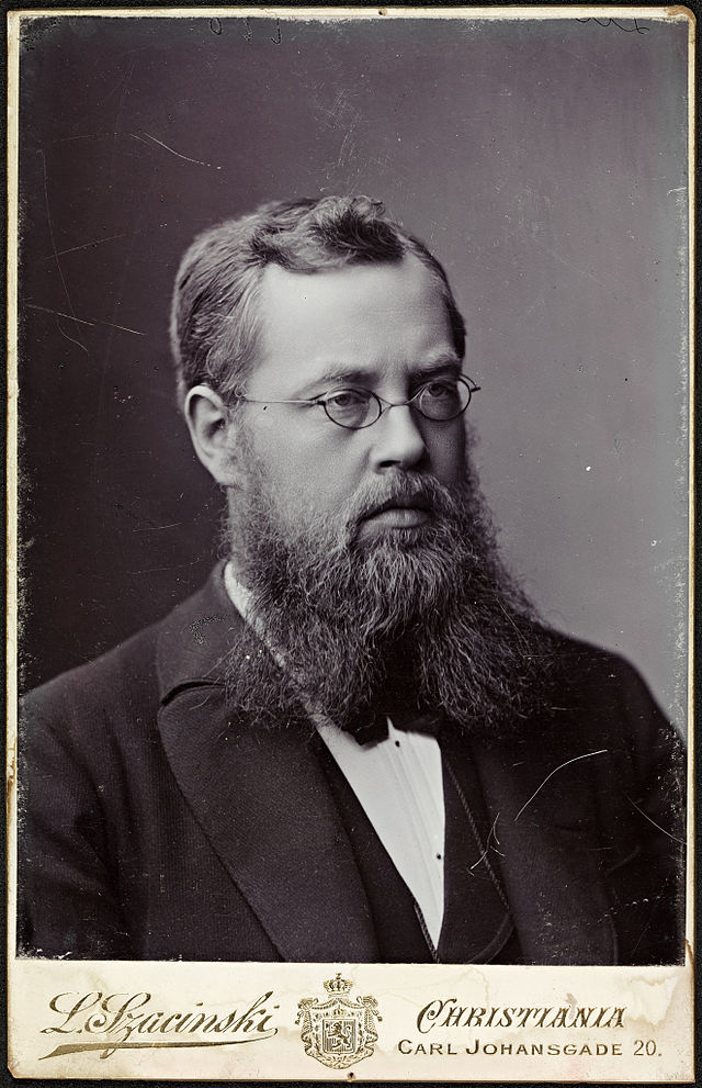 Portrait of Sophus Lie (1842-1899)