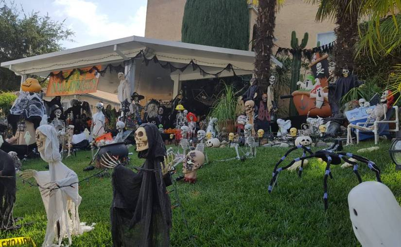 Decorate like you're going to open up a Halloween distribution center! 💀🎃🐱🕸️👻