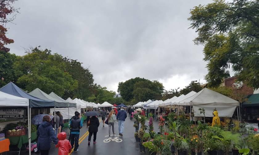 Rainy day at the Farmers Market