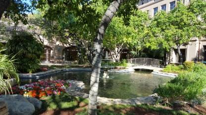 Langham Hotel pond closeup