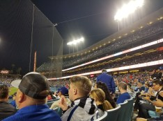 The crowd at the stadium just behind the safety netting looking up towards the first base side beneath bright lights