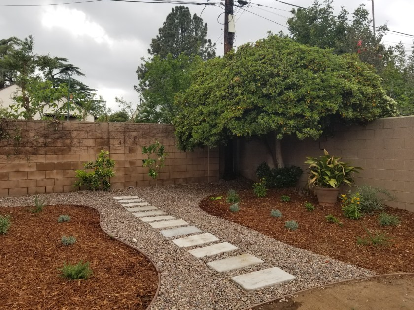 Backyard garden with rows of plants on both sides and a river rock pathway through the middle and across the back