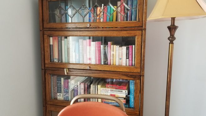 A tidy and cutely arranged bookshelf and lamp in a bright corner.
