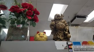 Red roses, a yellow cat, and a Budda adorn a side table