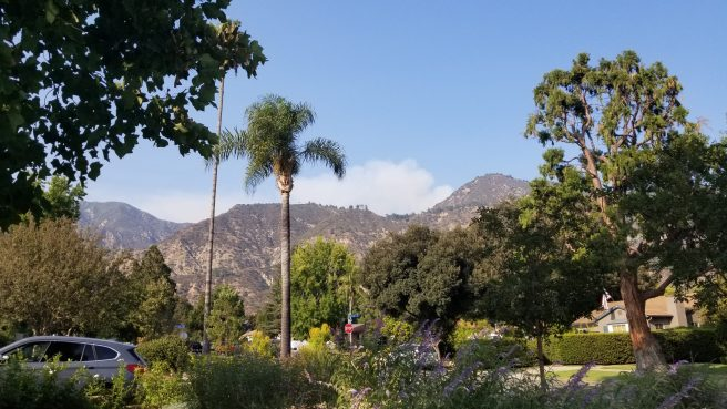 View of the fires at the top of the mountain from my front yard in North East Altadena right under Mt. Wilson