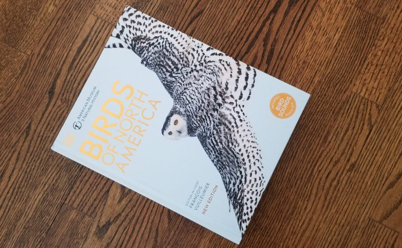 Birds of America book cover featuring an owl in flight sitting on a wooden floor