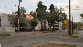 Angle on trees with Glendale Memorial Hospital behind them. The word Hello on a bright orange background peeks out between the trees.
