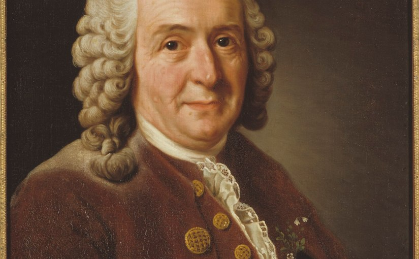 Carl Linnaeus, by Alexander Roslin, 1775 (oil on canvas, Gripsholm Castle)