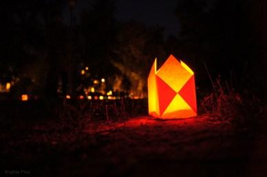 Festivalul Luminii Editia 10 2014 - Parcul Central Simion Barnutiu Cluj-Napoca