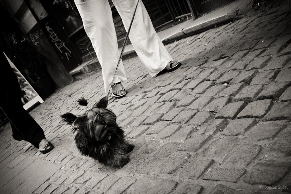 Walking through Bucharest