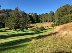View of 15th with 16th green behind.
