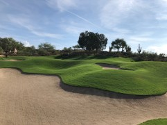 Bunker view of 11th green complex.