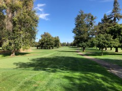 Middle - 4th tee.
