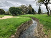 Closer look at the creek (a little Carnoustie feel).
