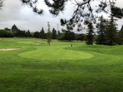 Side view of 2nd green with 4th green in the background.