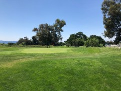 View of 12th green.