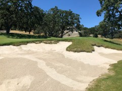 Close-up view of one of these scary, but awesome bunkers.