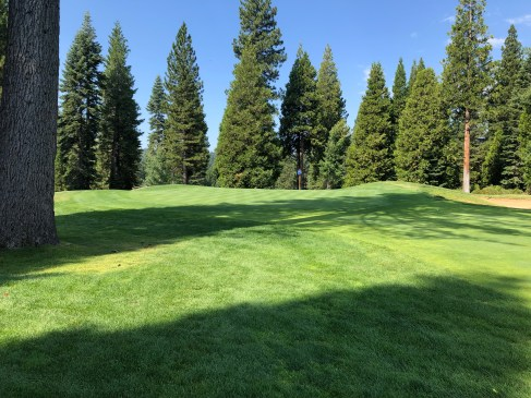 Closer view of 7th green.