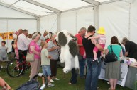 Town Show 2009_03
