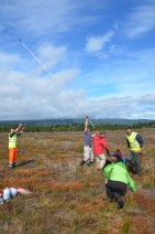 How many scientists does it take to core a peat bog?