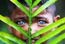 3 Suku di Indonesia