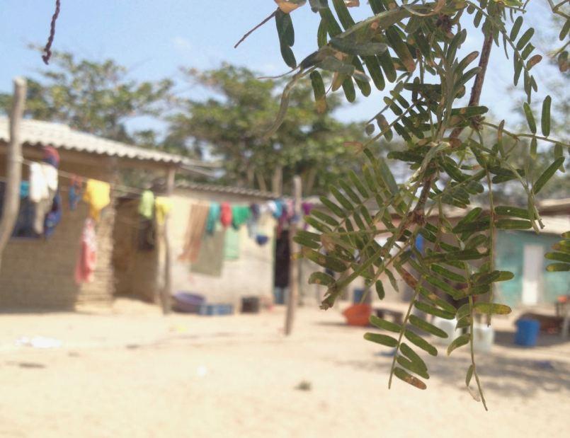 rickety shacks things to do in la guajira