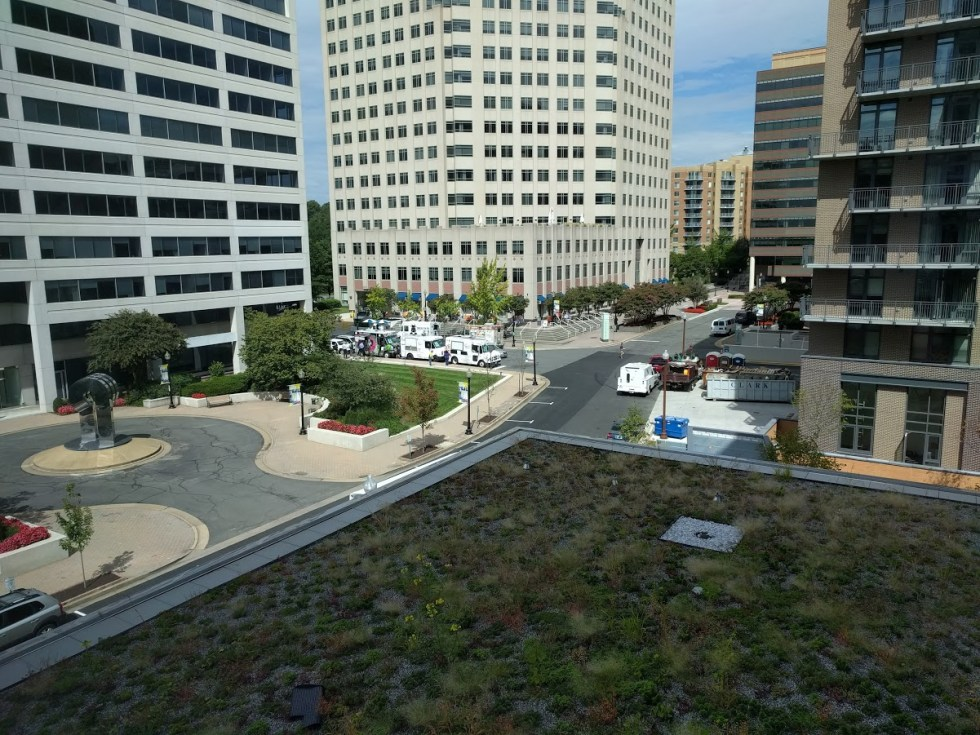 View of Ballston Food Trucks