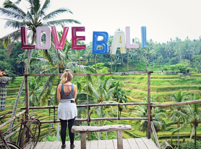 love bali rice terraces ubud bali