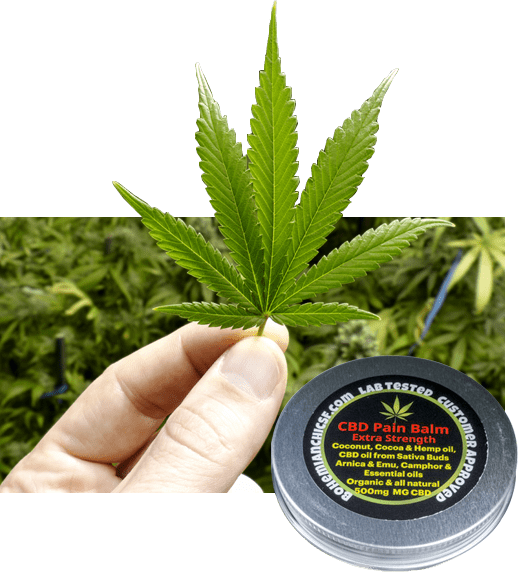 Natural CBD Pain Balm