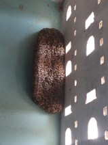 Beautiful beehive at the turn of our staircase