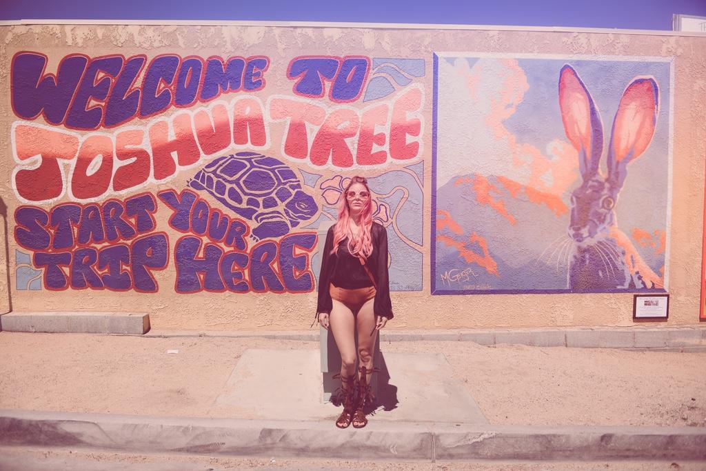 Pink-arrows-boutique-boho-bunnie-free-people-fpme-joshua-tree-vintage-ted-lapidus-fashion-blogger-2