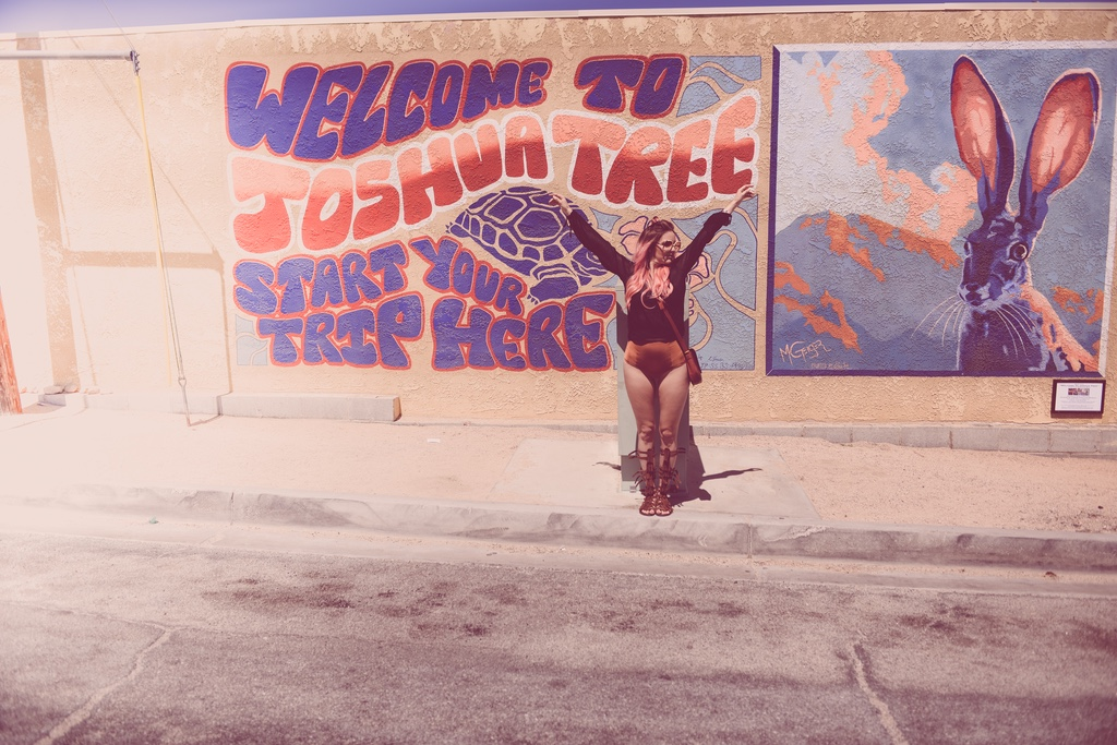 Pink-arrows-boutique-boho-bunnie-free-people-fpme-joshua-tree-vintage-ted-lapidus-fashion-blogger-4