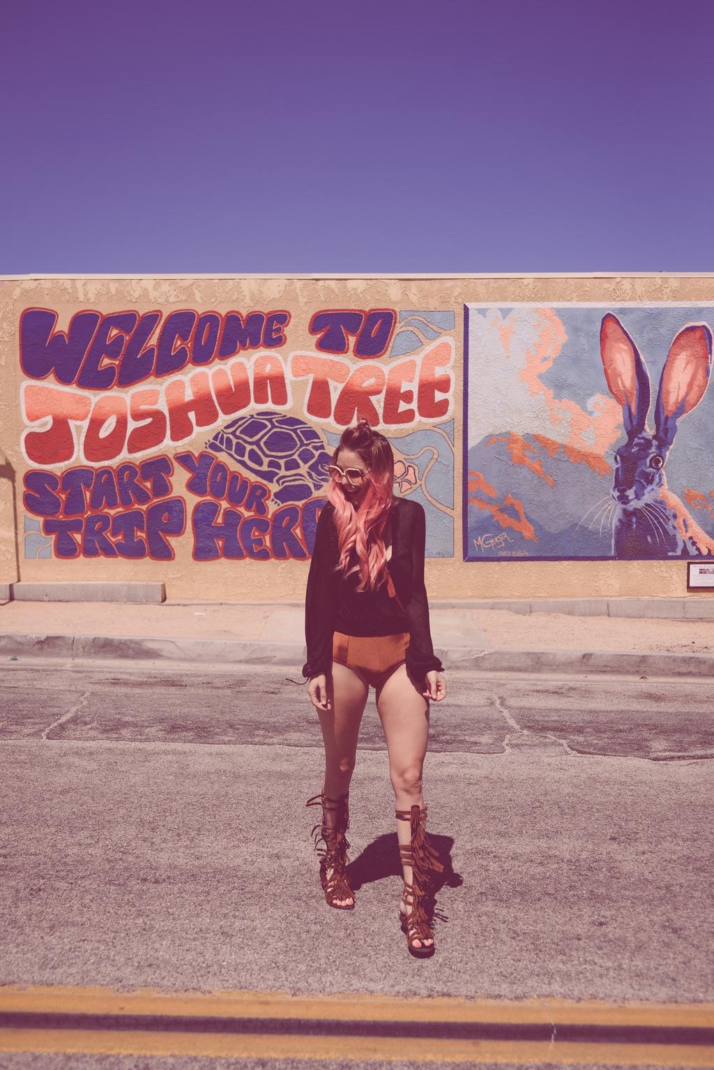 Pink-arrows-boutique-boho-bunnie-free-people-fpme-joshua-tree-vintage-ted-lapidus-fashion-blogger-5