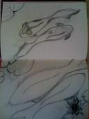 DIY KOI 2014 Annal Sketches
