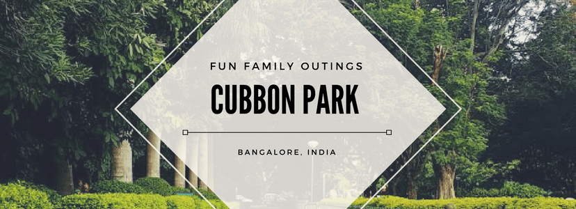cubbon park, bangalore, india, things to do in bangalore, bengaluru, family