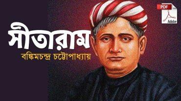সীতারাম উপন্যাসpdf sitaram