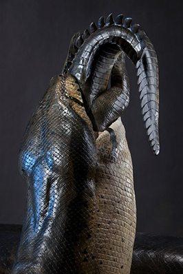 Images Titanoboa-Eating-An-Alligator-1