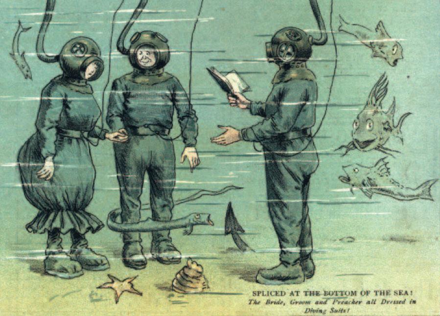 seawedding