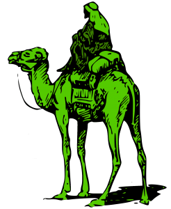 Silk-Road-Marketplace-Camel-246x300