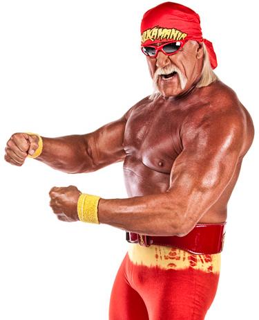 Hulk Hogan allowed