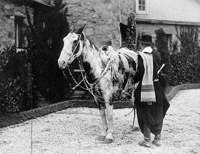 In 1925, Aimé Tschiffely set out to ride two horses from Buenos Aires to New York City | Boing Boing
