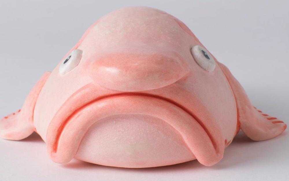 Ceramic blobfish | Boing Boing