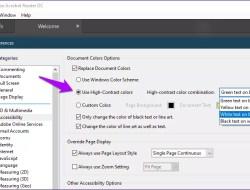 Screenshot showing how to turn dark mode on in Adobe Acrobat Reader