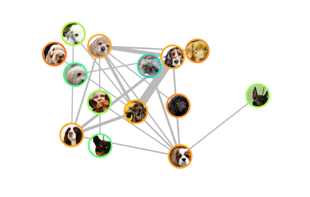 Interactive dataviz showing how dog breeds are related | Boing Boing
