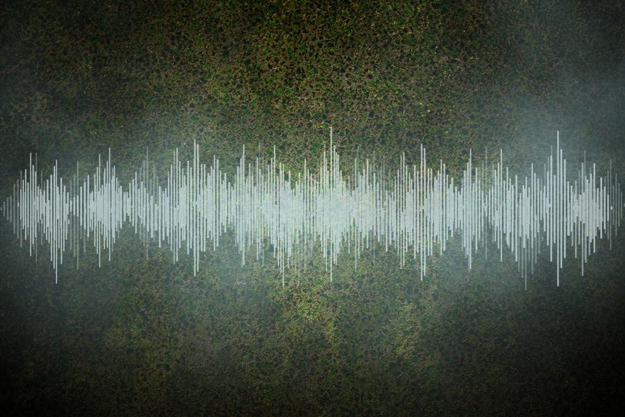 Image of audio file, by Christine Daniloff of MIT