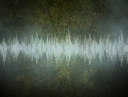 Image of audio file, by Christine Daniloff of MIT