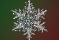 Photo of snowflake, by Nathan Myhrvold / Modernist Cuisine Gallery, LLC