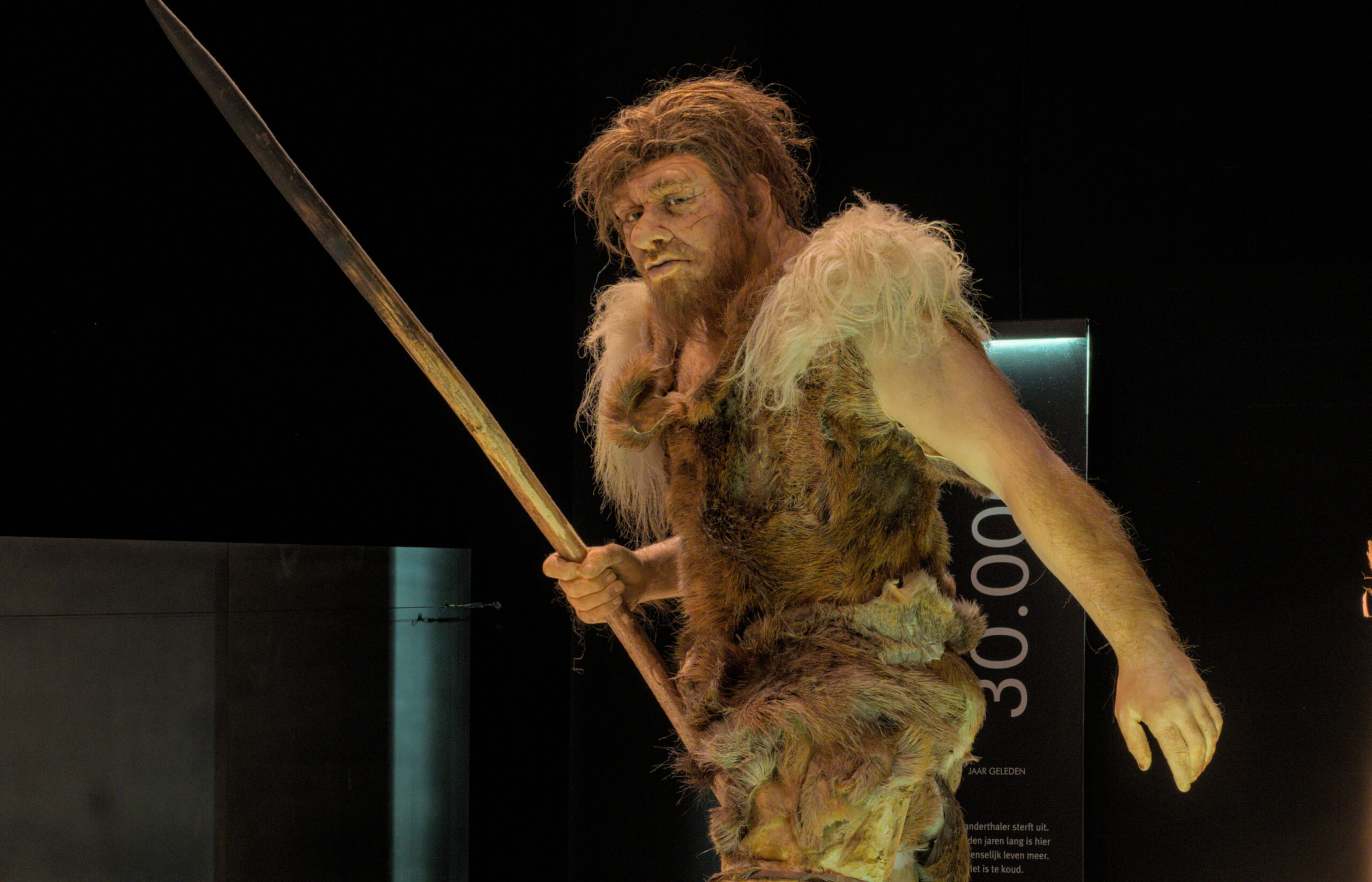 What we know about sex with Neanderthals