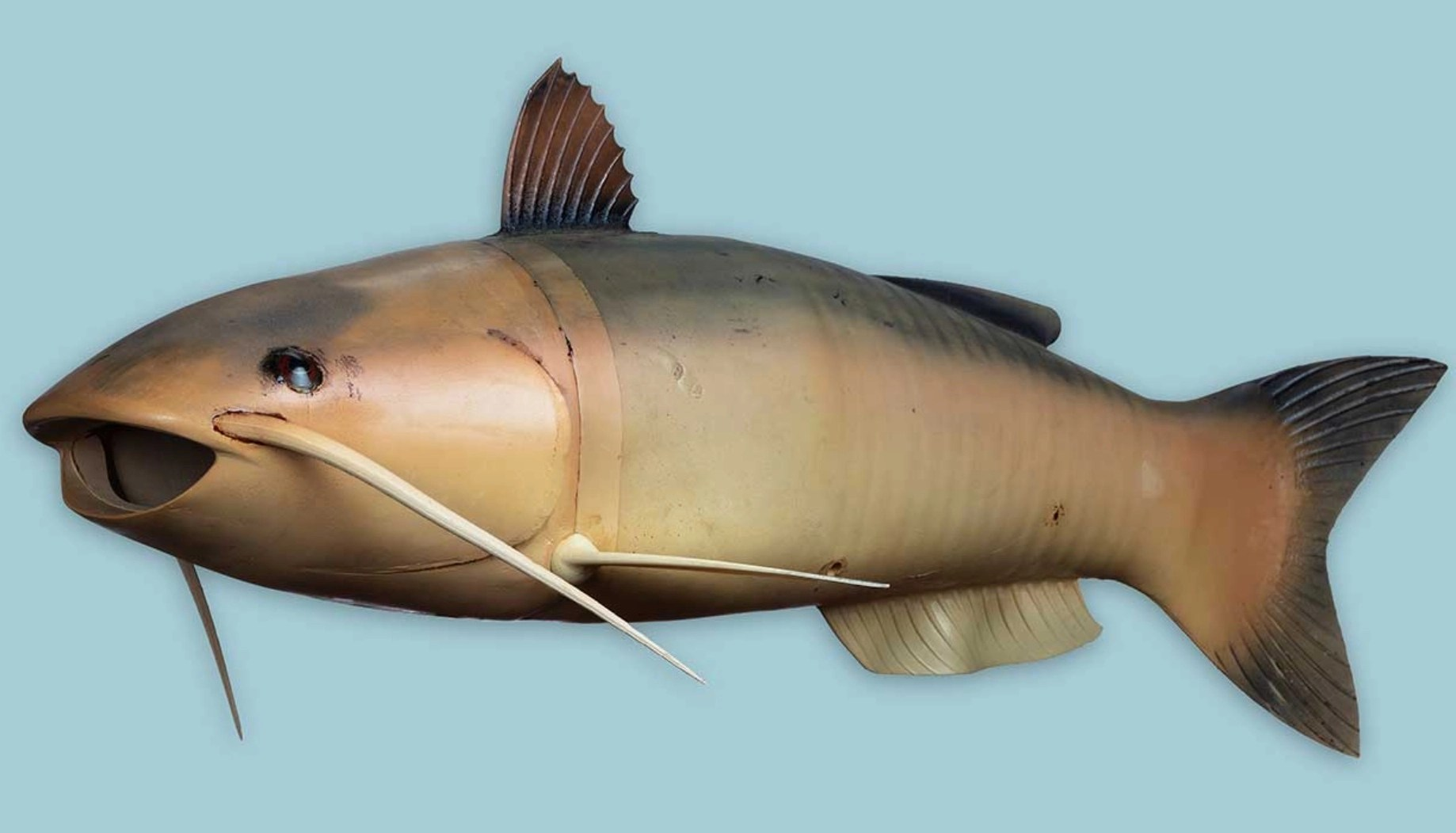 This is Catfish Charlie, the CIA's robot spy fish